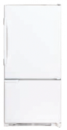 Whirlpool WAB2225PEKW 22Cu.ft. 220 Volt 50Hz Bottom Mount Refrigerator