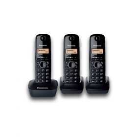 Panasonic KX-TG1613 220-240 Volt 50 Hz Cordless Phone - Three Handset Cordless Phone  - Caller ID Capable - 15 Hour Talk Time - To Use Outside North America.
